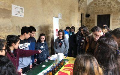 Participación de los alumnos de 4ESO en la Semana de la Ciencia en Úbeda